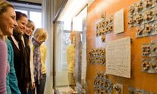 Führungen durch die Ausstellungen